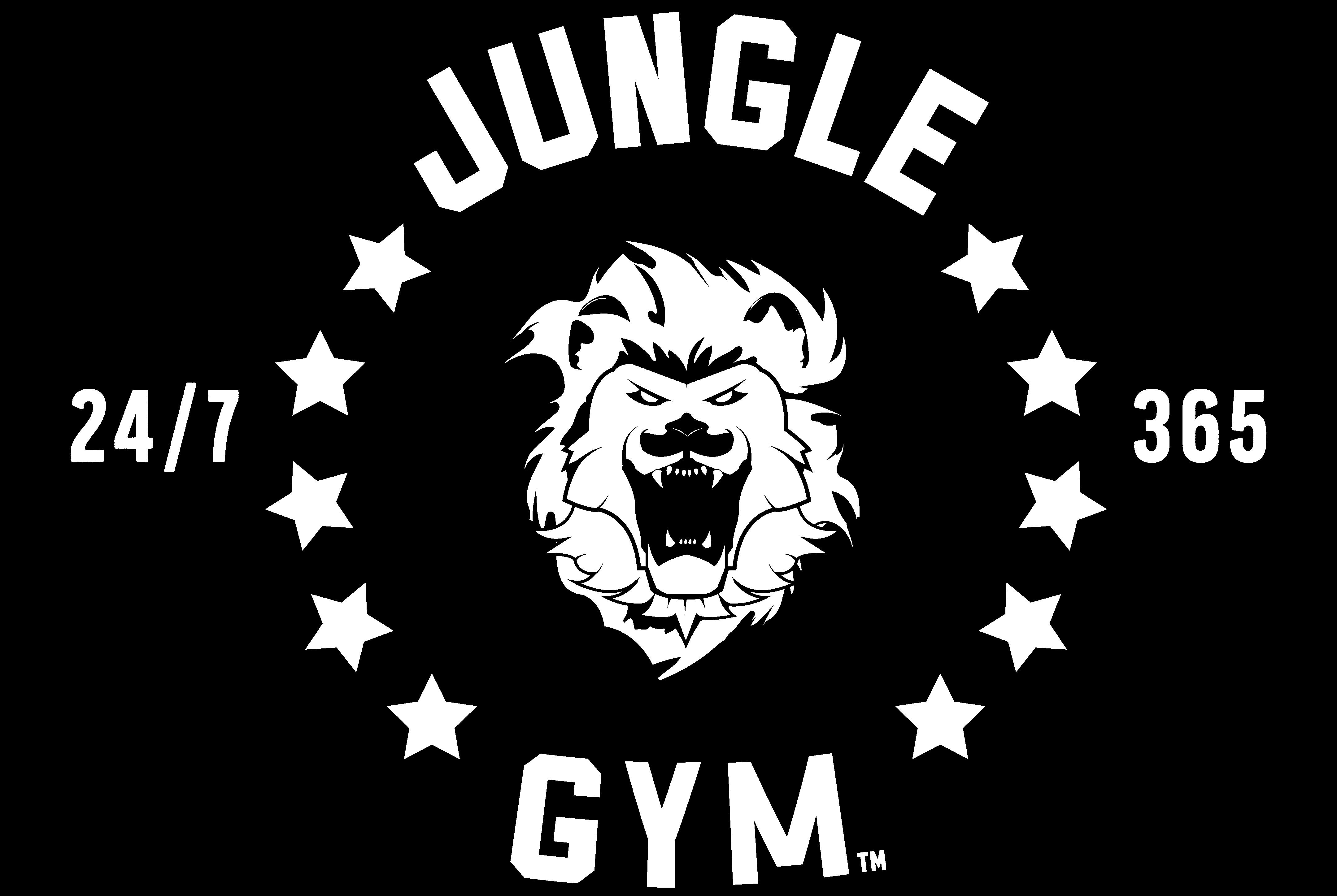 Jungle Gym Duluth